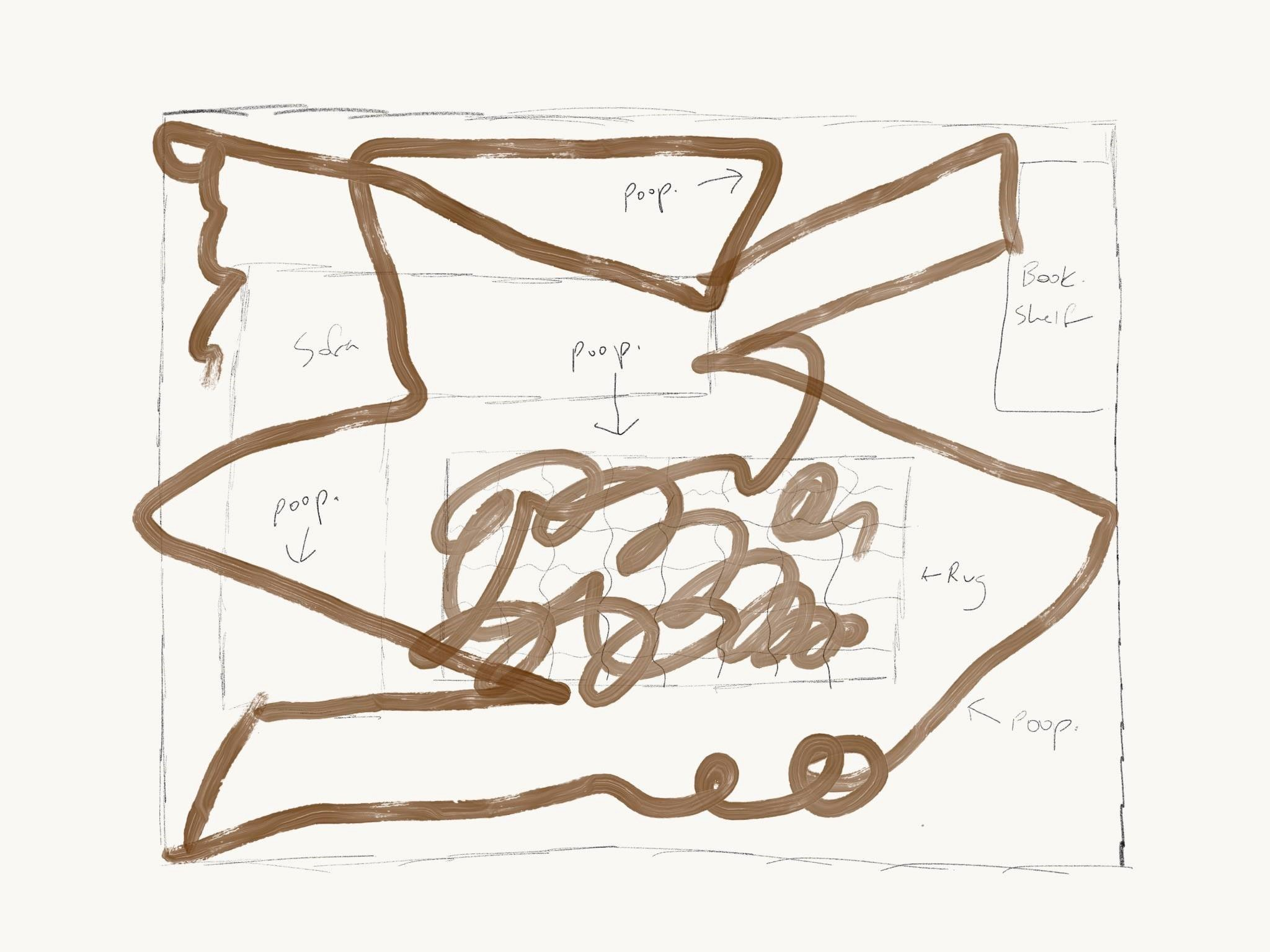 Diagram of What Happens When a Roomba Runs Over Poop