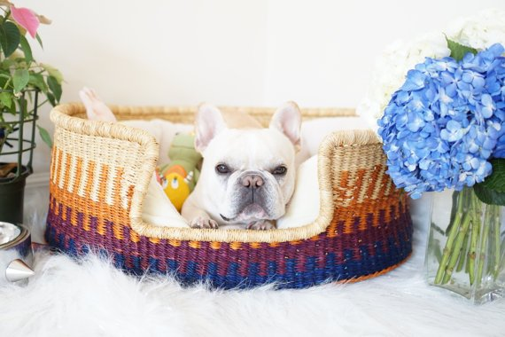 DesignDua Dog Bed From Unique Dog Gifts Post