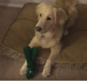 Jolene with Gumby Toy