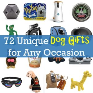 Unique Dog Gifts