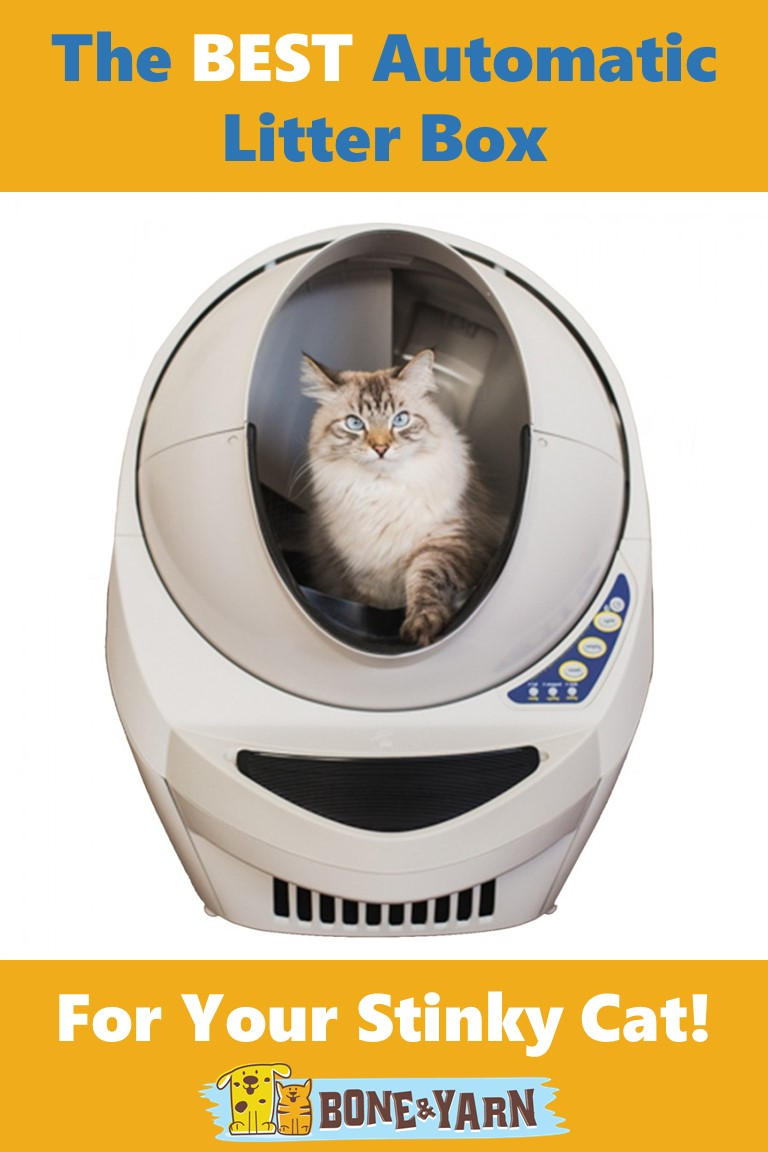 Best automatic litter box cover photo