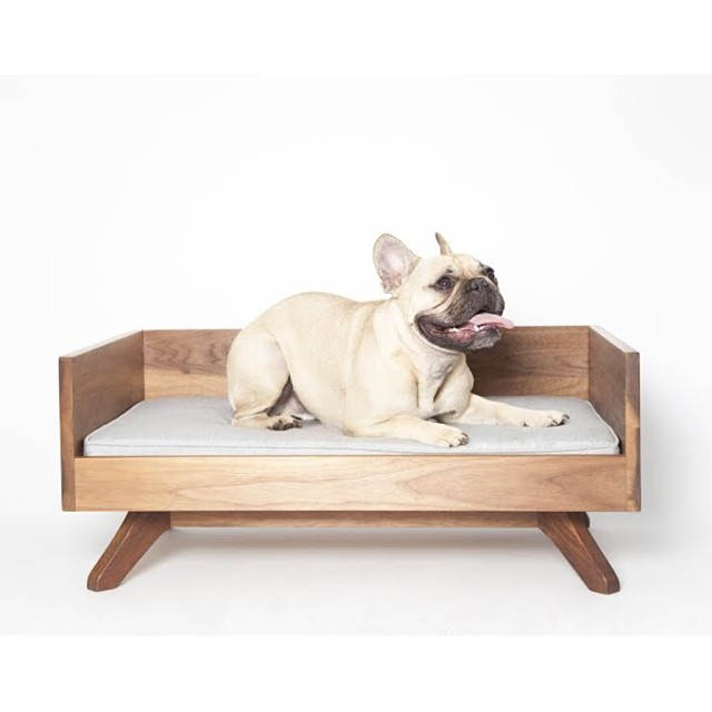 best dog beds