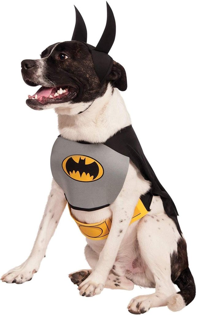 Batman Halloween Costume