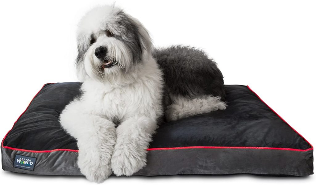 Better World Pets Orthopedic Dog Bed for Large Dogs