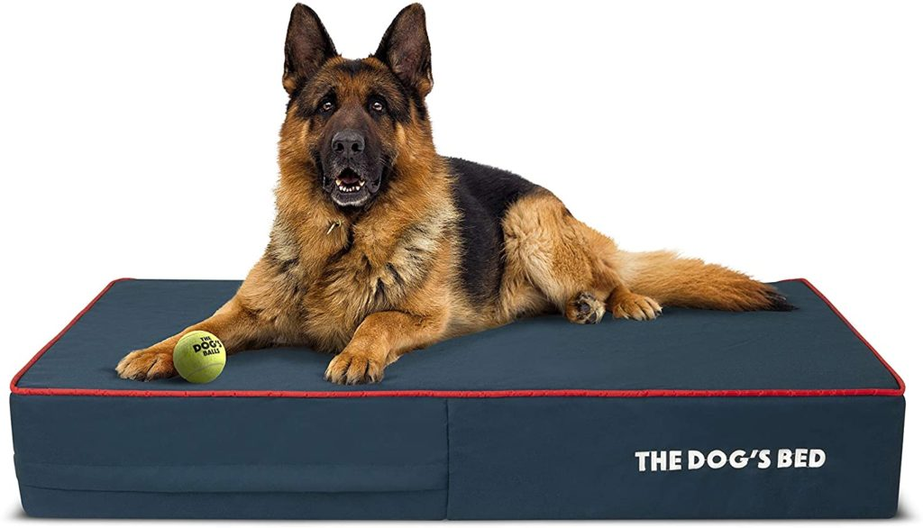 The Dog's Bed Orthopedic Dog Bed