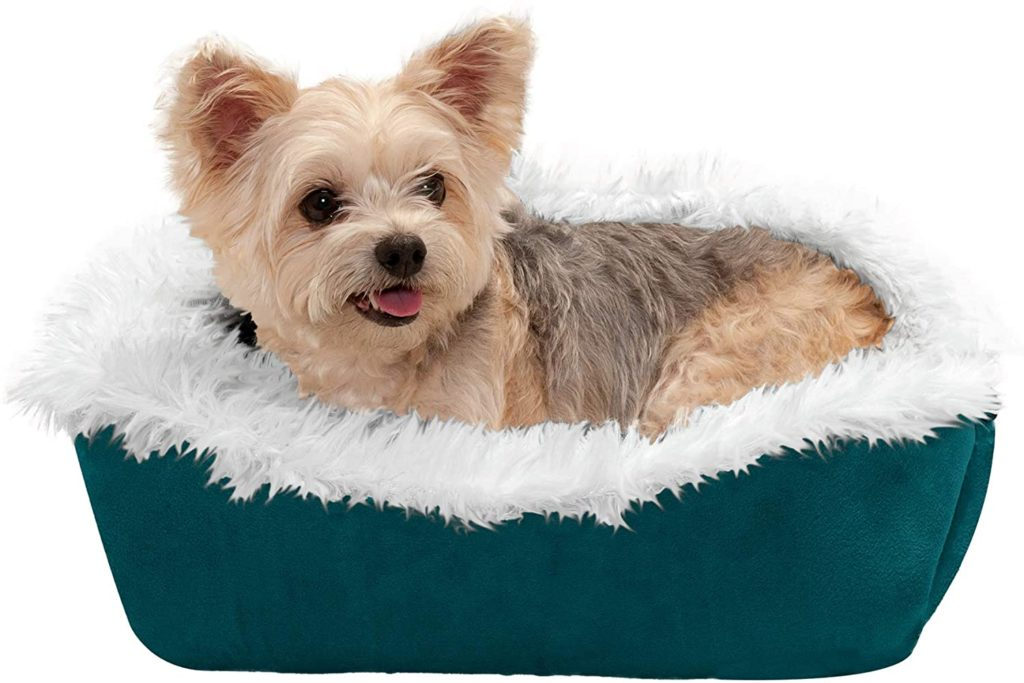 Best Small Dog Beds These Beds Are Made For Your Smaller Breed Bone Yarn