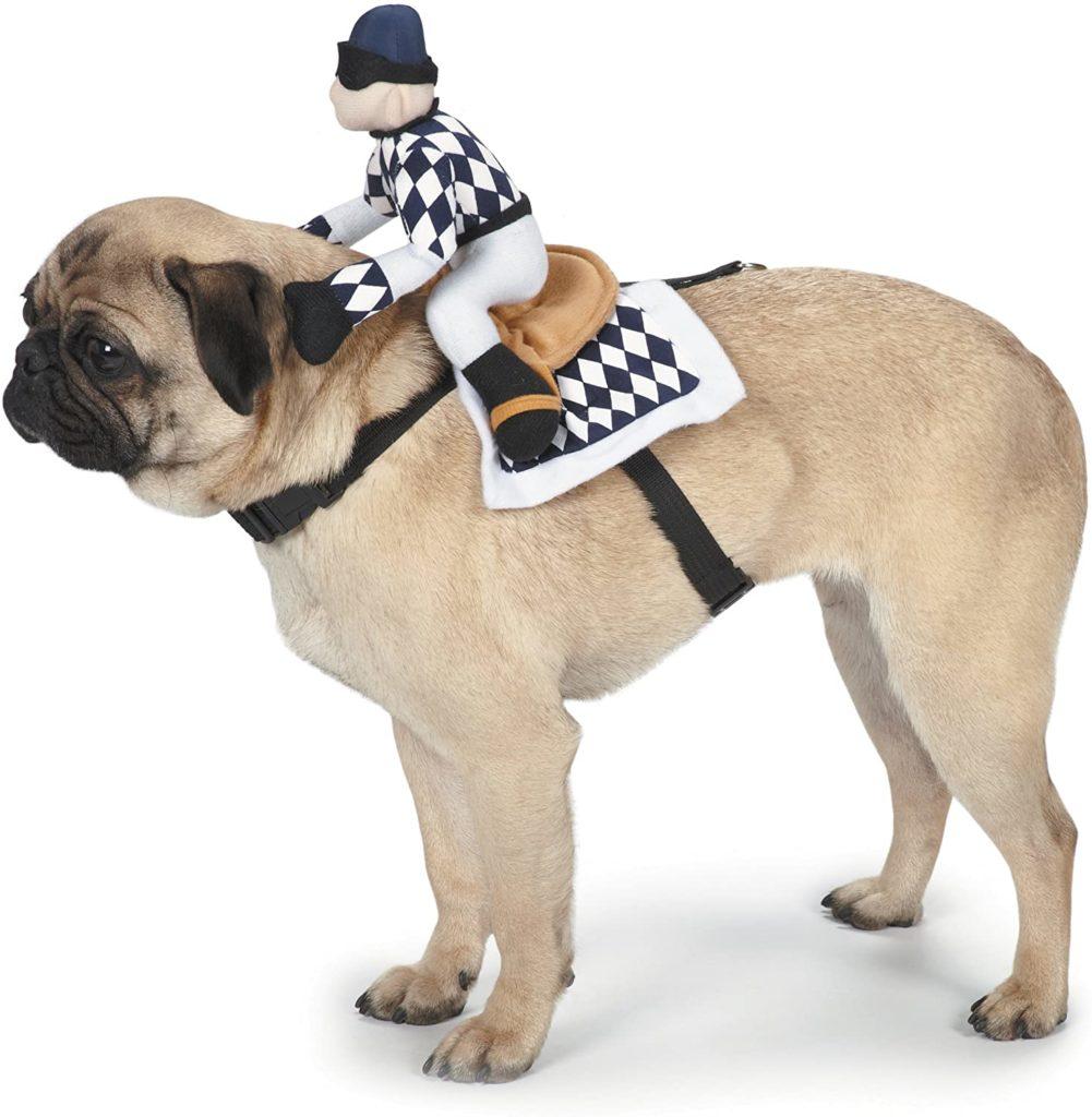 Jockey Racer Dog Halloween Costume