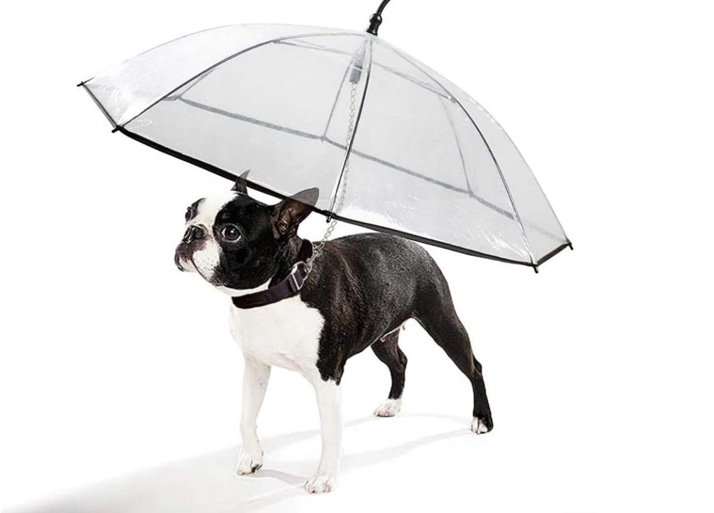K&L Pet Dog Leash Umbrella