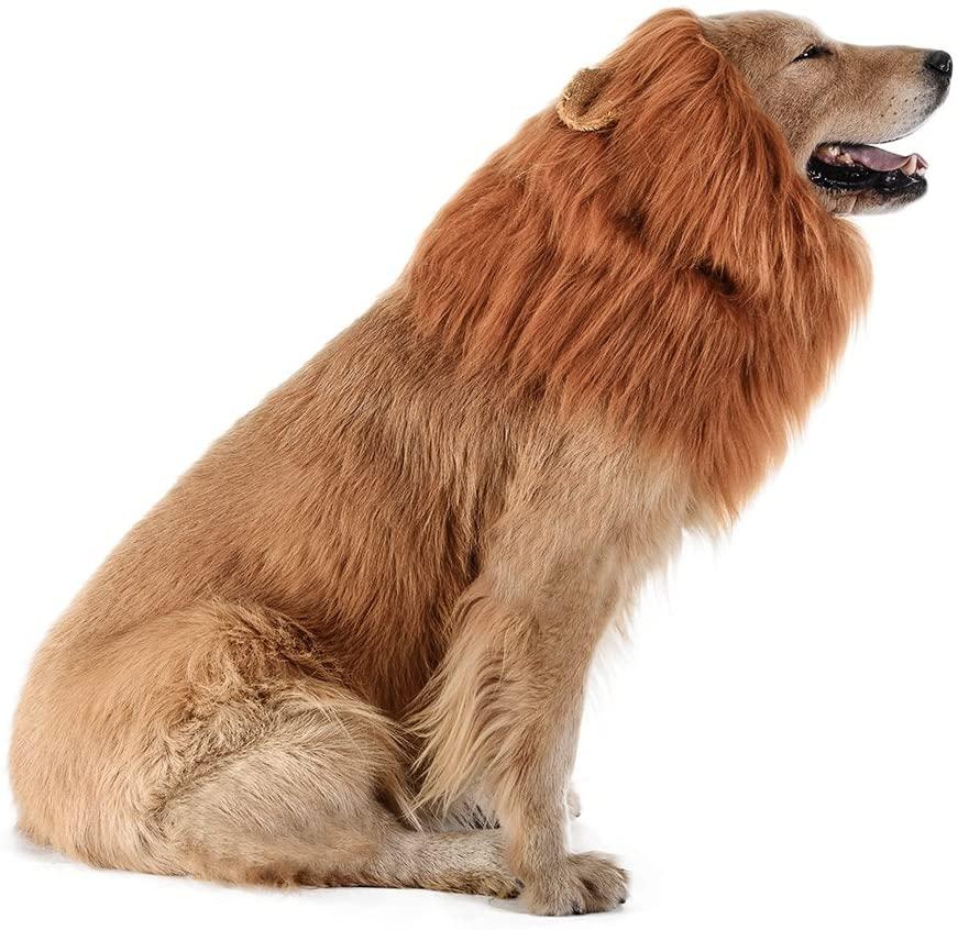 Lion Mane Dog Halloween Costume