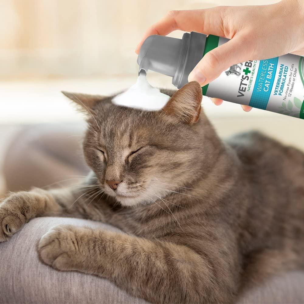 waterless cat shampoo