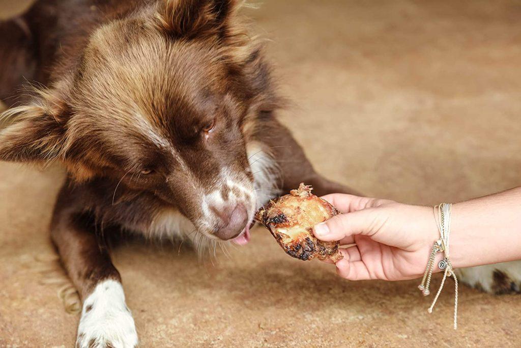 Marrow bones for dogs