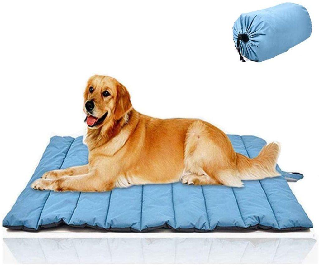 GoWild Oversize Travel Dog Mat
